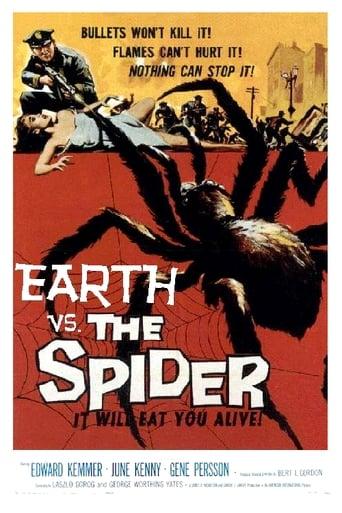 Die Rache der schwarzen Spinne