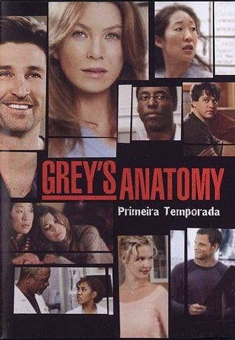 Anatomia de Grey 1ª Temporada - Poster