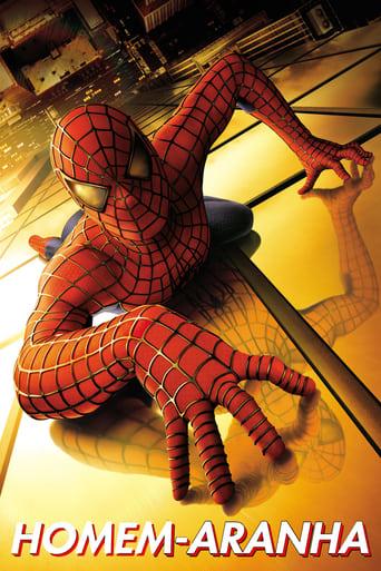 Imagem Homem-Aranha (2002)