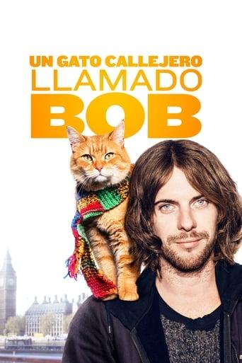 Poster of Un gato callejero llamado Bob