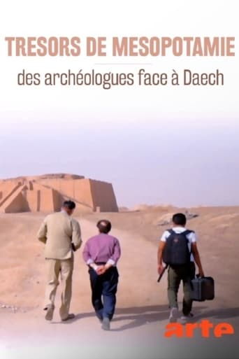 Trésors de Mésopotamie: des archéologues face à Daech