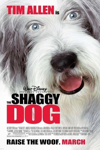 Shaggy Dog - Hör mal, wer da bellt - Komödie / 2006 / ab 0 Jahre