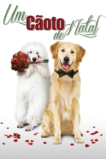 Poster of A Christmas Wedding Tail
