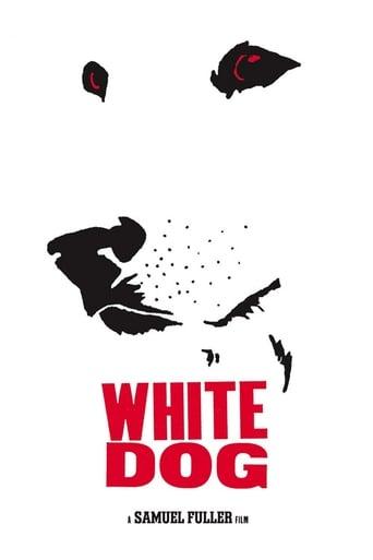 Poster of Perro Blanco