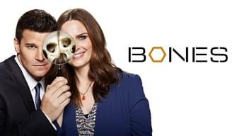 Кістки (2005-2017)