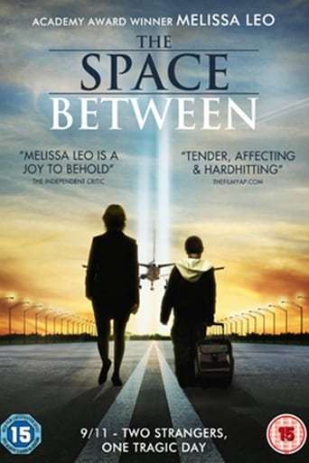 Poster of The Space Between