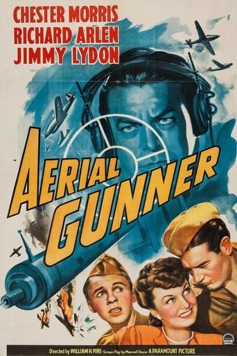 Poster of Aerial Gunner