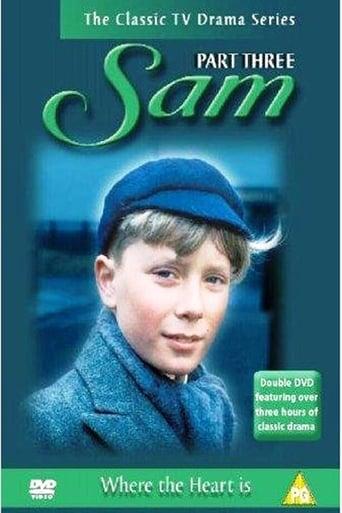Poster of Sam