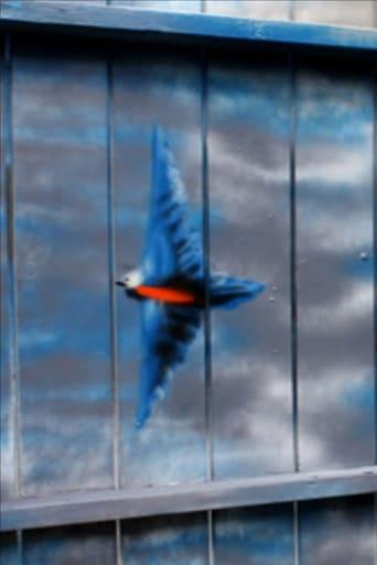 Spirit of the Bluebird