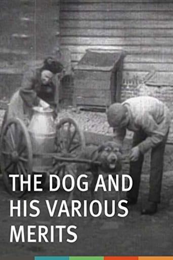 Les chiens et ses services