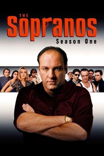 Sopranai: Mafijos kronika / The Sopranos (1999) 1 Sezonas online