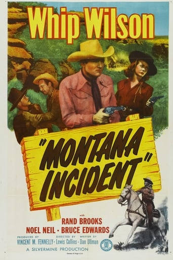 Poster of Montana Incident