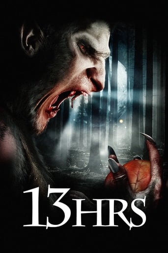 Poster of 13Hrs
