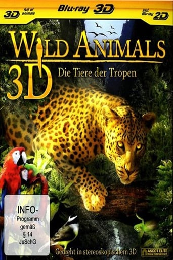 Wild Animals: The Life of the Jungle