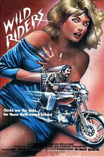 Poster of Wild Riders