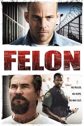 Poster of Felon