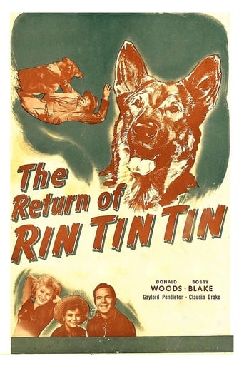 Poster of The Return of Rin Tin Tin
