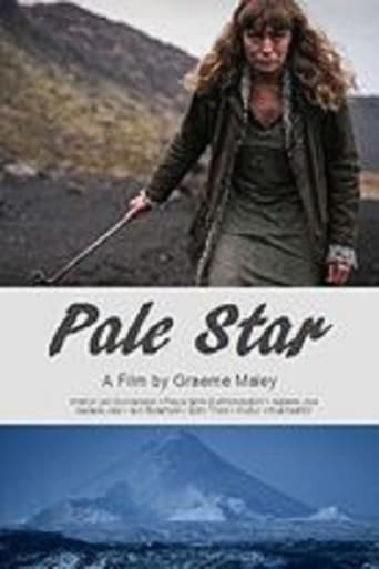 Poster of Pale Star