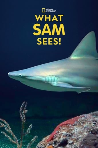 What Sam Sees