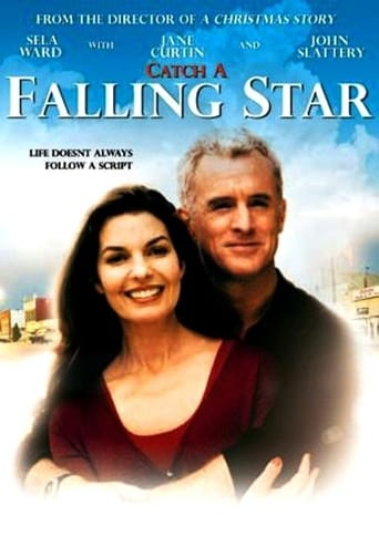 Poster of Catch a Falling Star