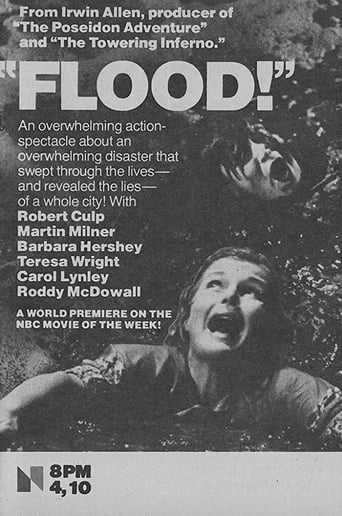 Poster of Flood!
