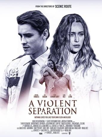 Poster of A Violent Separation