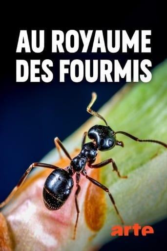 Watch Au royaume des fourmis full movie online 1337x