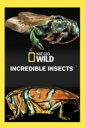 Poster of Incredible Insects