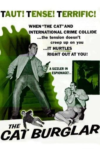 Poster of The Cat Burglar