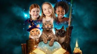 Полохливі кішки (2021- )