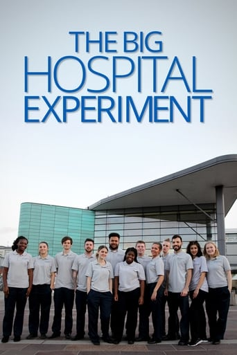 Poster of The Big Hospital Experiment