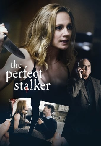 Poster of The Perfect Stalker