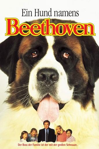 Ein Hund namens Beethoven - Komödie / 1992 / ab 6 Jahre