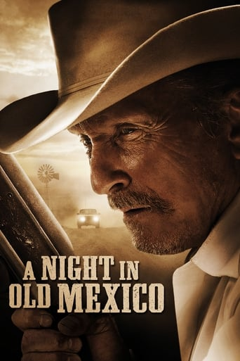 Poster of A Night in Old Mexico