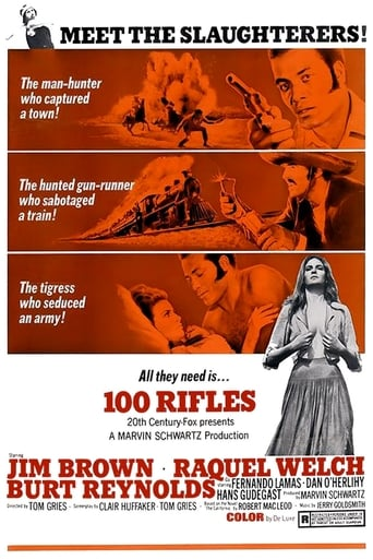 Poster of 100 Rifles