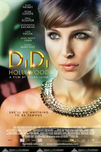 Poster of DiDi Hollywood