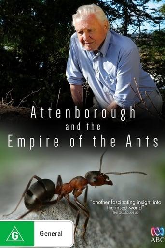 BBC 自然世界:沙漠蚂蚁帝国