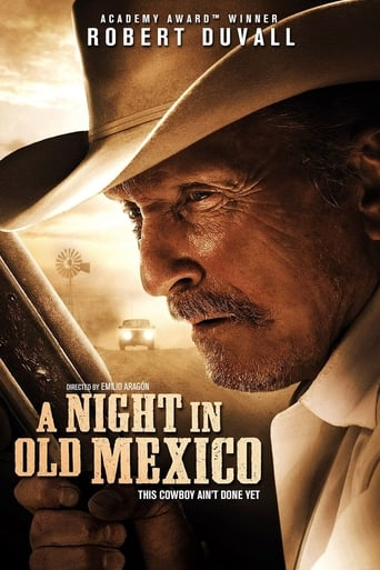 A Night in Old Mexico (2013) - poster