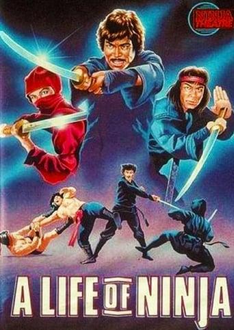 Die Rache des Ninjas