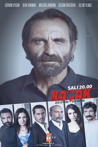 Poster of The Fugitive fragman