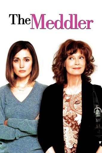 Poster of The Meddler