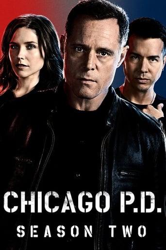 Čikagos policija / Chicago P.D. (2015) 2 Sezonas