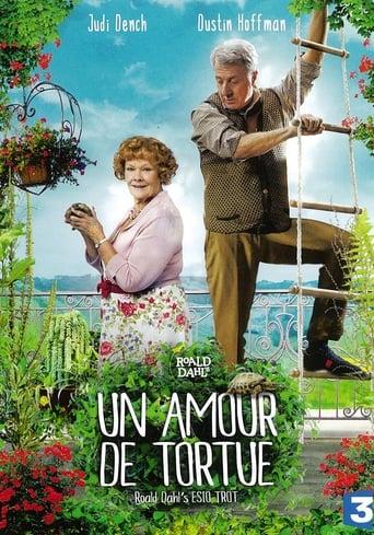 Poster of Un amour de tortue