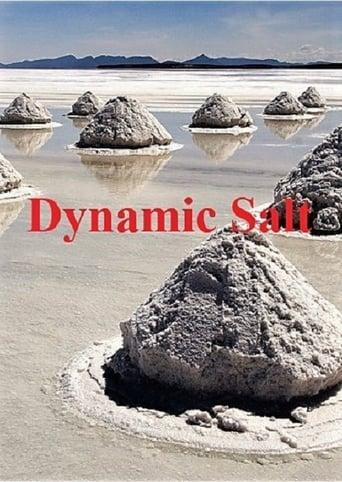 Dynamic Salt Movie Poster