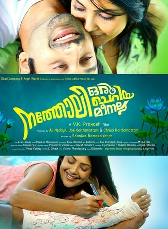 Watch Natholi Oru Cheriya Meenalla 2013 full online free