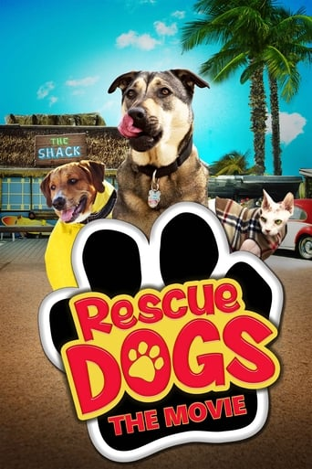 Rescue Dogs image