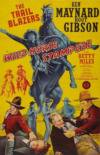 Poster of Wild Horse Stampede