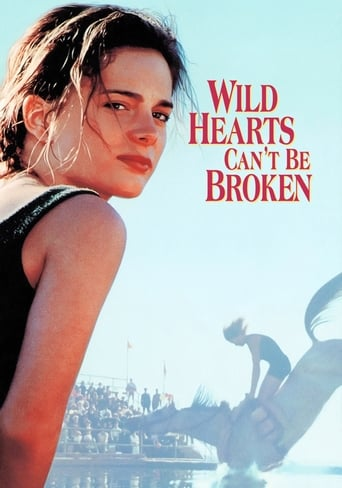 Poster of Wild Hearts Can't Be Broken