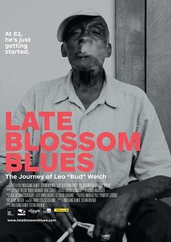 Poster of Late Blossom Blues