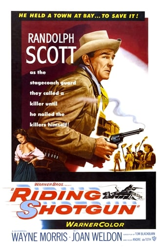 Poster of Riding Shotgun